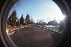 up the neighborhood. (heatherm815) Tags: road street trees houses sky sun snow film up pinetree mailbox lomo lomography hill fisheye neighborhood driveway telephonewires