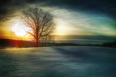 Pepperell Morning (Patrick Campagnone) Tags: morning winter snow cold tree field photoshop sunrise landscape frozen massachusetts earlymorning hdr highdynamicrange sigmadp1 patrickcampagnone foveonhdr