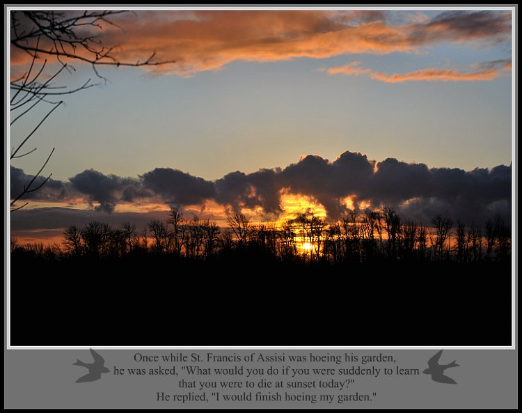 Sunset~Quote-2