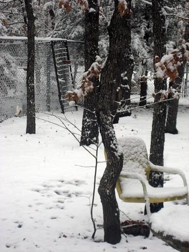 2010February11_Snow 005