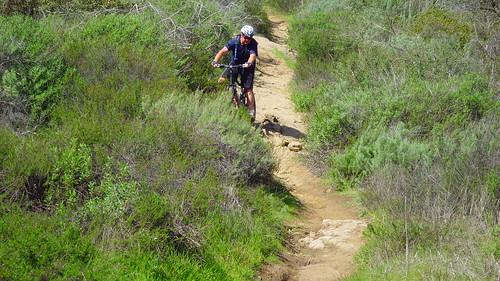 Joshua descending the last bit of T&A