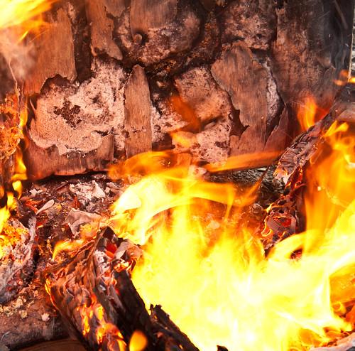 The Burn - 251/365 - 15 February 2010