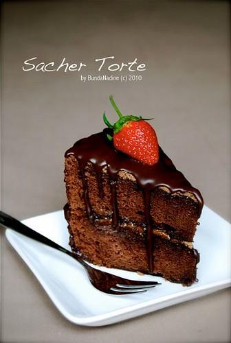 Sacher Torte - a slice