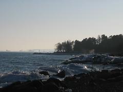 february 2010 027