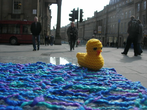 knitted duck on a street