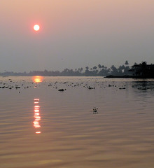 Sunrise Over the Backwaters 2 (Ron Rothbart) Tags: travel india water sunrise asia kerala backwaters alleppey alapuzzha