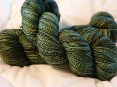 Sundara Sock (misplacedmadisonian) Tags: sock yarn sundara