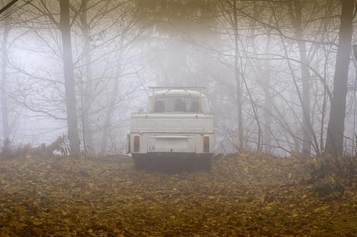 foggy-2