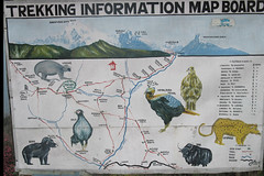 Picture 351 (paulnthompson) Tags: nepal annapurna theadventurecompany annapurnahimal trekkinginformationmapboard