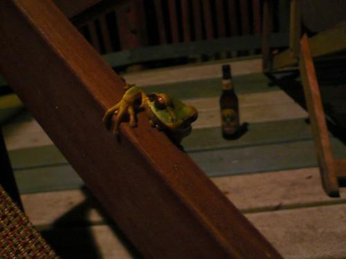 Rana y Cerveza