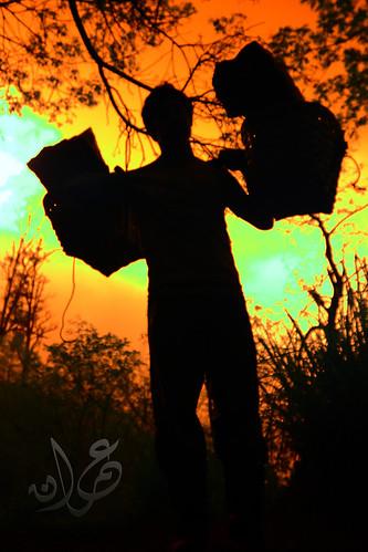 Pembawa Keranjang Belerang (IR)