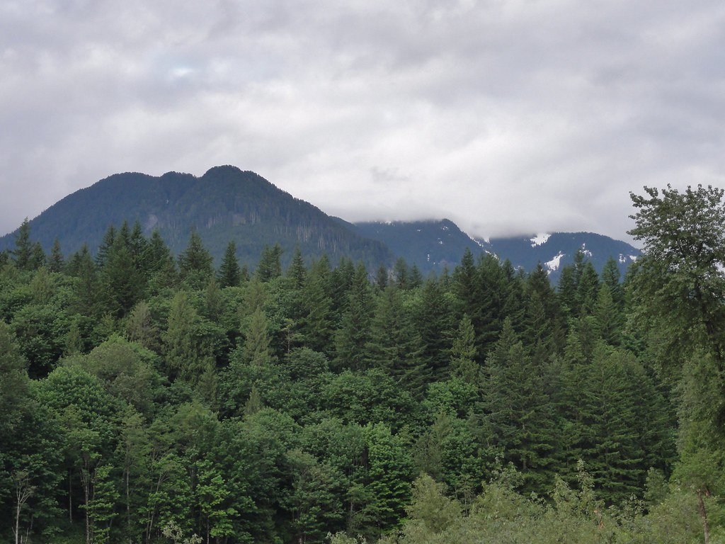 Cascades from Skykomish River, near Gold Bar