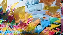 Vento (Márcia Valle) Tags: bandeirinhas vento wind brasil brazil festadesãojoão bahia prado márciavalle nikon festa sãojoão