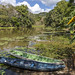 Embera Indigenous Village gamboa panama pandemonio 2017 - 03