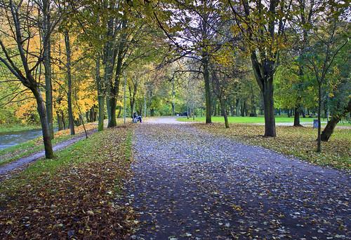 Autumn in Sereikiškių park
