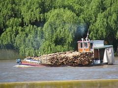 transport wood