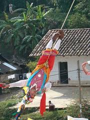 Indigenas_23 (Gionitz_PIC) Tags: cultura indigenas danzantes tradicion rostros volador trajestípicos voladoresdepapantla culturamexicana trajesregionales fiestasregionales totonacos rostrosdemexico rostrodemexico
