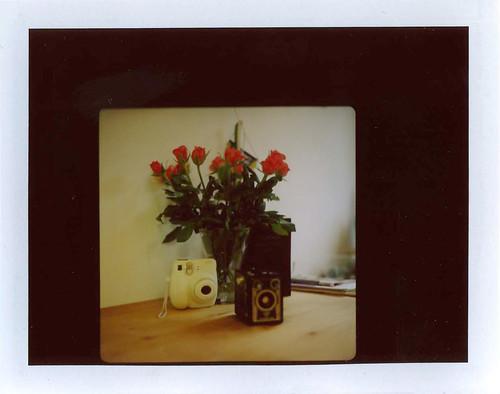 Camporn mit Rosen