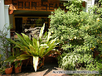 This is a restaurant, not a gardening store