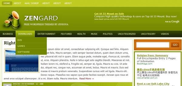 WordPress清爽简洁主题:zengard