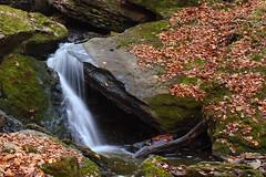 Run-off at Louth (logger97) Tags: waterfall niagara jordan escarpment brucetrail jordanstation louthconservationarea