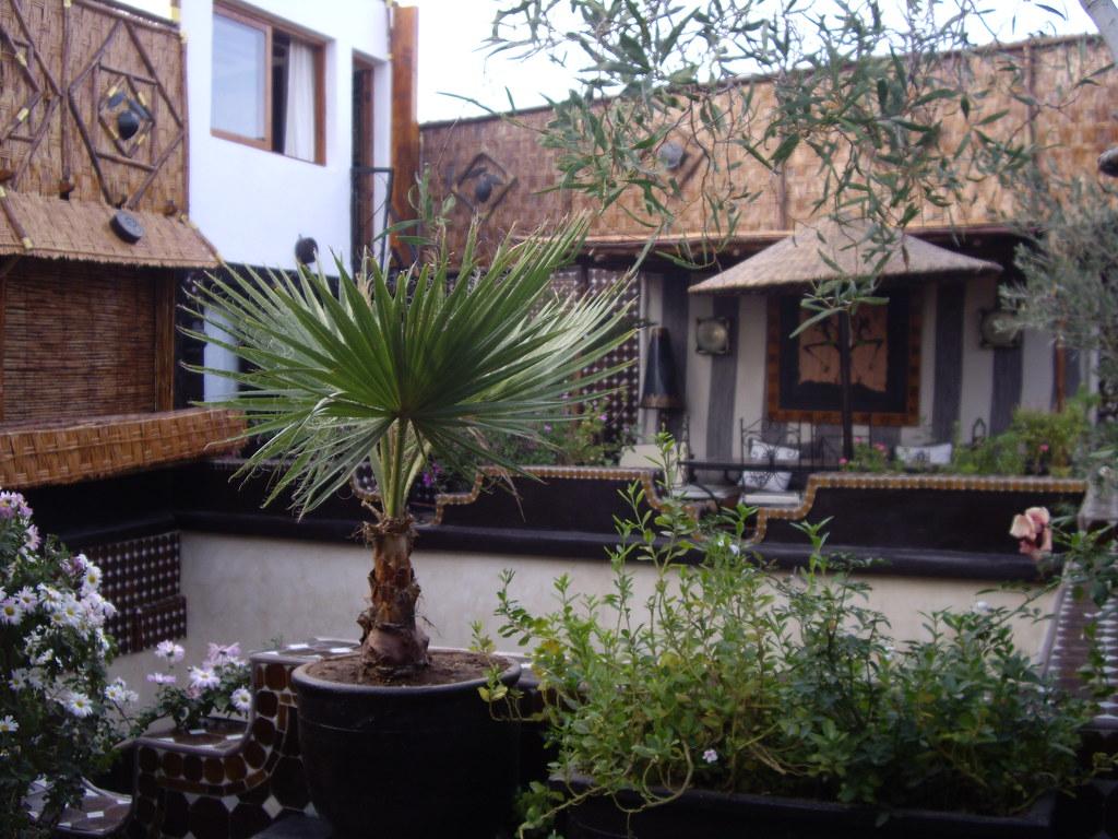 riad hotel morocco