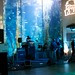 CBC - Long Beach Aquarium