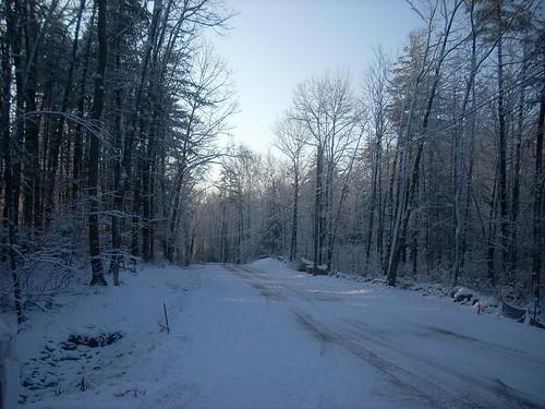 Snowy Sunday 5