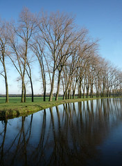 The Netherlands 009