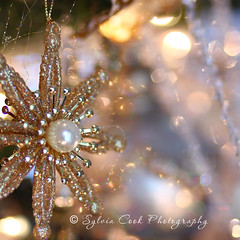 silver and gold (slcook52 (Sylvia)) Tags: christmas tree silver gold bokeh explore ornament inmyhouse canon85mmf18 copyrightedallrightsreserved