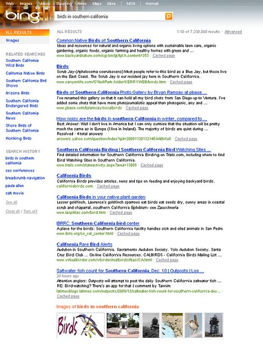 Bing blended search