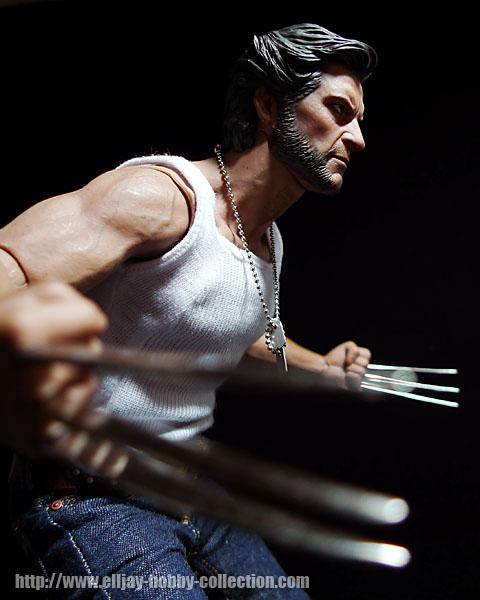 Wolverine (17)