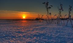 (Andrey Avtomonov) Tags: blue winter sunset red sky orange cloud snow color reflection green ice field grass yellow night evening ray shine russia moscow horizon low beam region hdr 2010 18105 podolsk d90