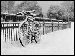 Winter sleep (ted.kozak) Tags: snow lines bicycle fence 6x45 selfdeveloped kozak sekor fomapan400 mamiyarz67proii film:iso=400 fomafomapan tedkozak tadaskazakevicius film:brand=foma developer:brand=agfa filmdev:recipe=5559 agfar09oneshot film:name=fomafomapan400 developer:name=agfar09oneshot