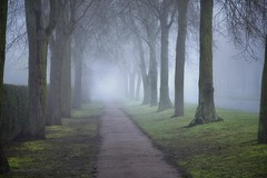 Mist Avenue (sosij) Tags: uk trees winter england mist fog vanishingpoint path broadway letchworth avenue morningmist herts magicalmist whichivewantedtocatchaswellasthisforalongtime tickthatoffmylistandmovetothenext
