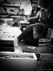 6.30 a.m. - Fish time in Tsukiji (!) (♫ RaZiel ♫) Tags: fish cooking japan lumix tokyo asia market andrea grill panasonic tsukiji 日本 東京 mercato 築地 giappone tsukijifishmarket fux pesce 人 griglia raziel 肖像 cucinare 築地市場 東京都 中央区 アジア 日本国 ittico 亜細亜 fz8 panasoniclumixfz8 andreafux
