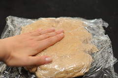 shaping the dough - easier wrapped in plastic