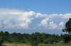 Cumulus Clouds over Kaziranga plains (debu_1717) Tags: india clouds moonsoon kaziranga