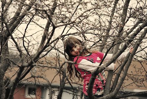 Tree Climbing Girl