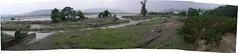 圖三、石岡壩淤深至少十餘米,致洪石流二度溢岸侵蝕劉家果園。