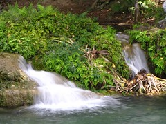 IMG_2796 (Ezniter) Tags: waterfall cascada huasteca sanluispotosi tamul tamasopo