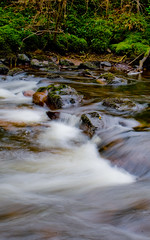 river rocks (droptheneedlenpray) Tags: longexposure trees ireland green wet water beautiful leaves river landscape spring flora rocks flowing ferns riverbank waterford dungarvan colligan beautifulireland