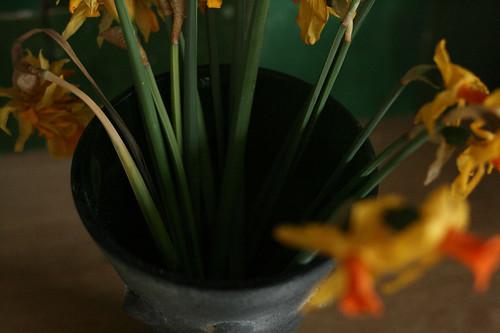 bloem4