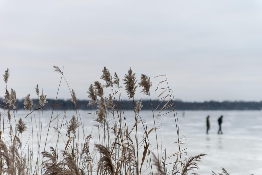 Delightful Rush (Edas Imagery) Tags: Winter Outdoor People Rush Ice Sea Nature  Edasimagery