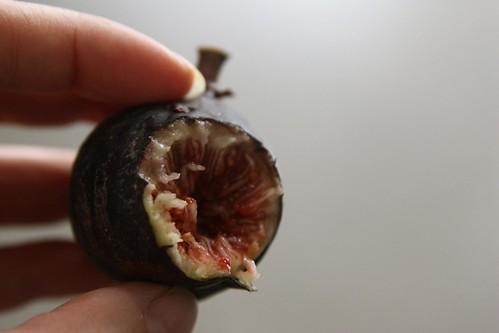 fig innards