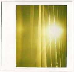 365.306: sunshine