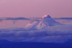 Mt Hood (vswag) Tags: ski oregon portland nikon skiing purple madras sigma mthood hood portlandoregon d90 sigma28 nikond90 platinumheartaward