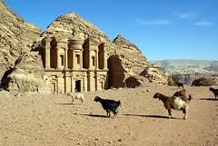 Goats at Petra (Slybacon) Tags: ancient petra jordan monastery goats nabataen