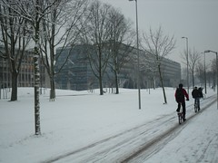 Mekelweg, TU Delft (crwilliams) Tags: snow netherlands delft tudelft date:month=december date:day=17 date:year=2009 date:hour=09 date:wday=thursday