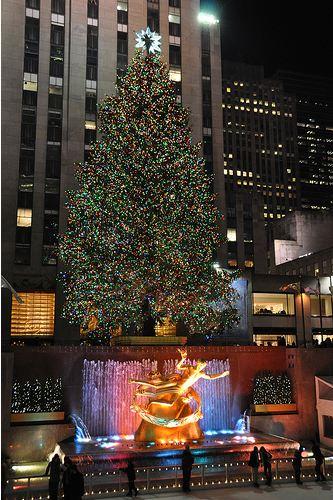 christmas_tree_rockefeller_center_2009